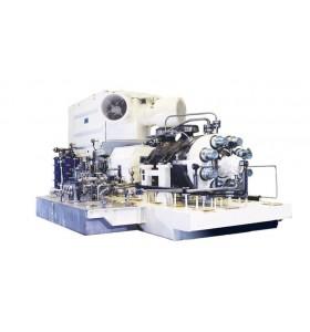CELEROS CUP-BB5V - Pompe à plusieurs étages, API, fût radialement fendue
